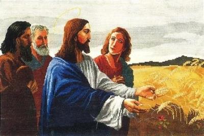 ИСУС В ЖИТАТА