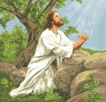 15а. ИСУС МОЛЕНИЕ О ЧАШЕ
